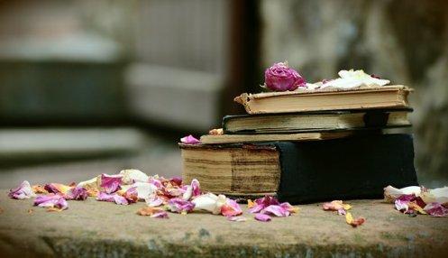 books-2447391__340