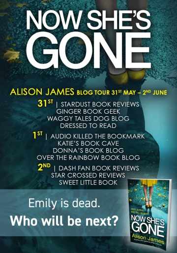 Now She's Gone - Blog Tour (1).jpg