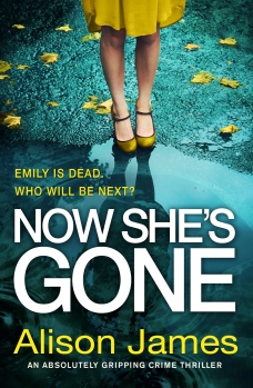 Now-Shes-Gone-Kindle (1)